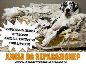 pizap.com14313324660461