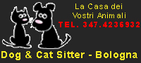 Dog & Cat Sitter Bologna